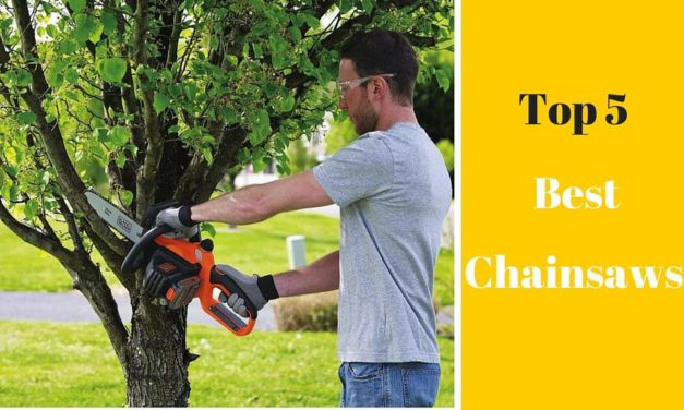 Chainsaw Ratings: Best Chainsaws