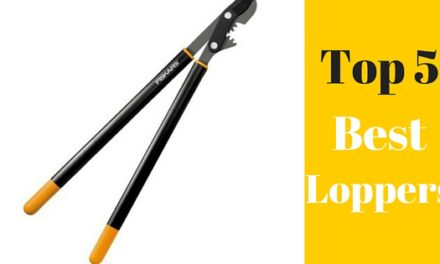 Top 5 Best Loppers for Less Than $50