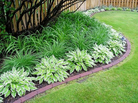 Daylilies and hostas garden bed.jpg