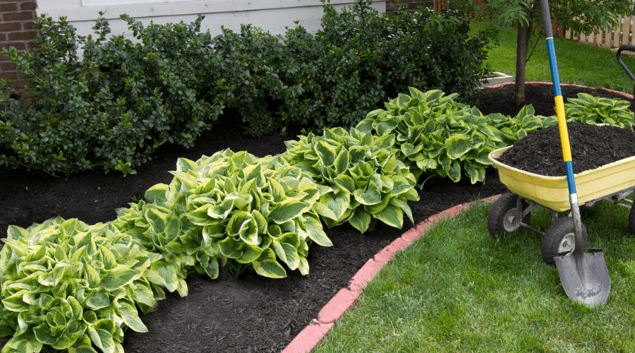 42 Garden Bed Edging Ideas That You Need To See