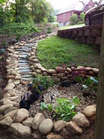 dry creek bed rain garden