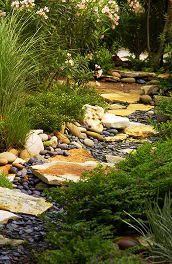 waterless creek bed