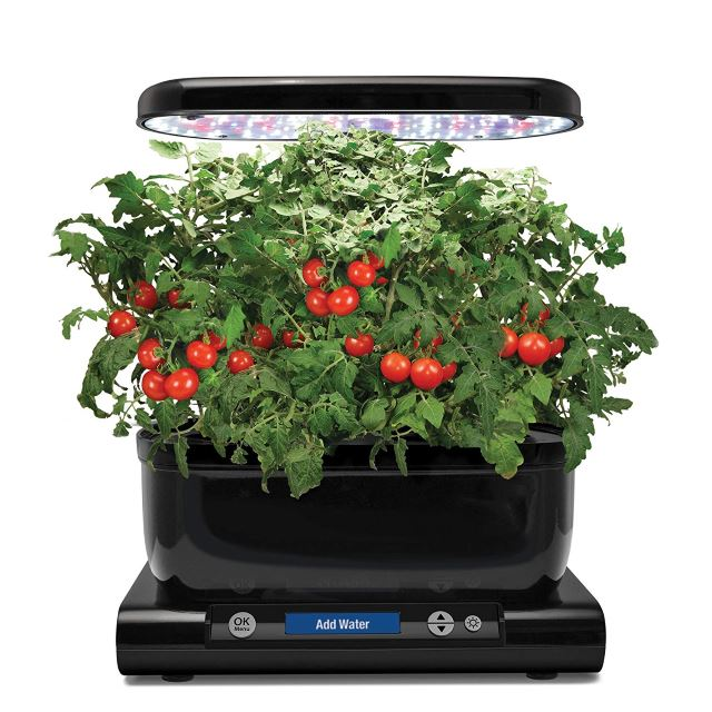 Harvestable Indoor Garden Solutions