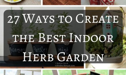 27 Ways To Create The Best Indoor Herb Garden