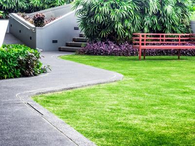 allergy-free-garden