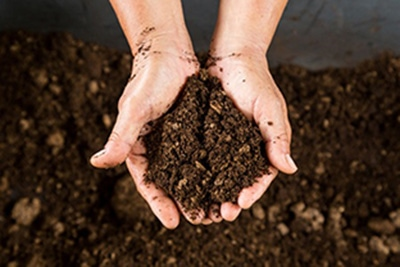 Can Garden Soil Be Used In Pots