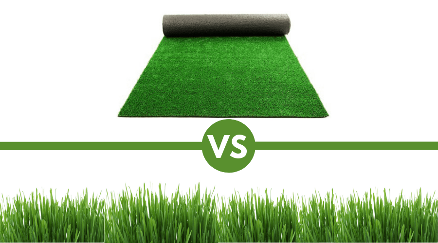 Featured Image - ARTIFICIAL VS REAL GRASS