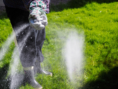 When Should You Fertilize Your Lawn