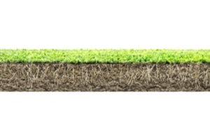 cutting too short grass