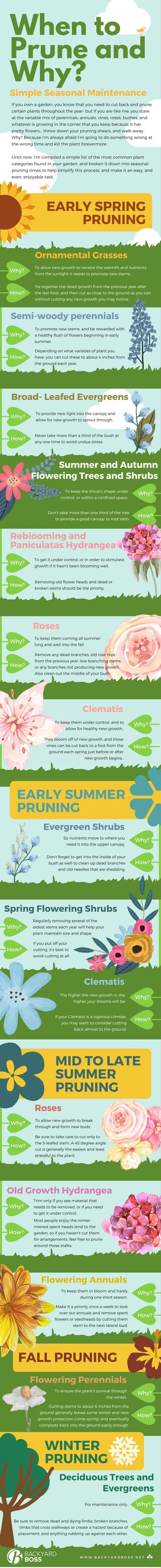 when-to-prune-and-why-infographic1