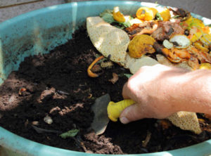 potting-soil-in-process