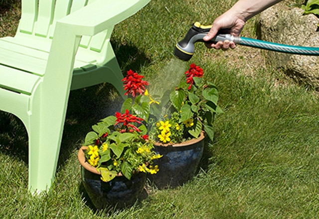 watering-a-plants-using-a-hose