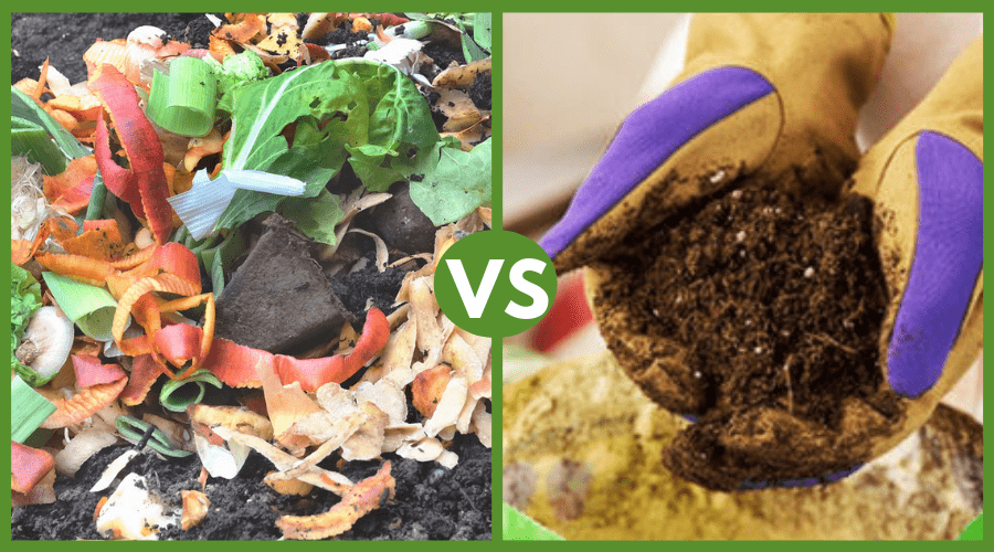 Featured Image - ORGANIC VS NON ORGANIC POTTING SOIL_ HOW TO CHOOSE THE RIGHT ONE
