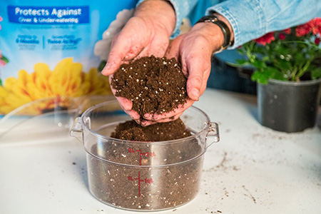 What Is The Difference Between Potting Soil And Garden Soul Garden Ftempo