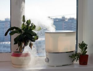 with-humidifier