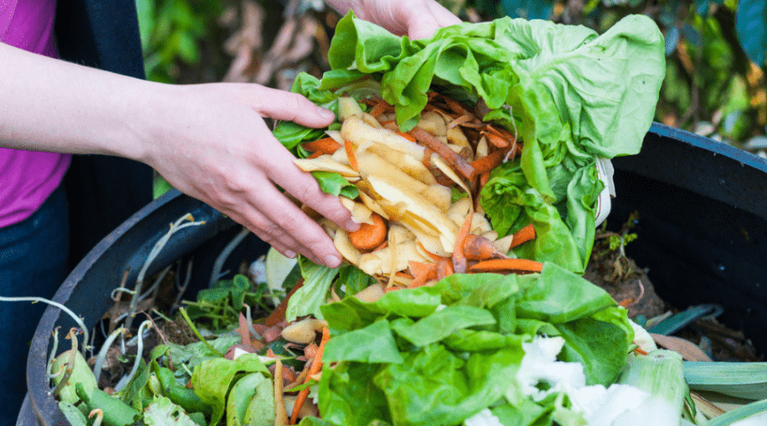 Featured Image - BENEFITS OF COMPOSTING FOR YOUR GARDEN