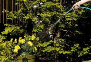 gardening-hose
