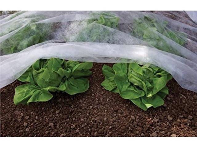 row-gardening-use
