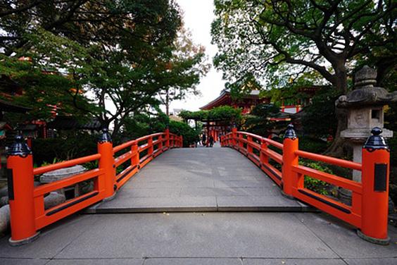 Bold Bridges
