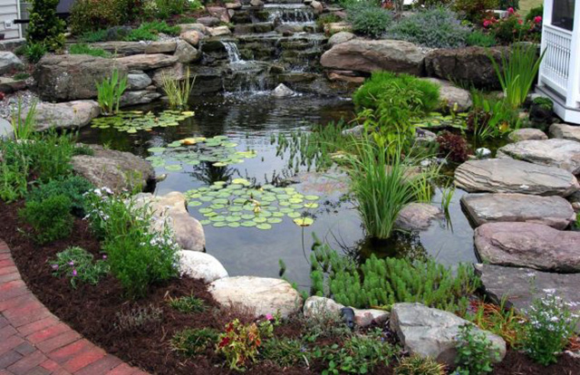 73 backyard and garden pond designs and ideas for Goldfish pond designs
