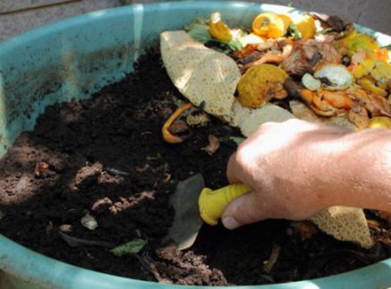 Compost Uses