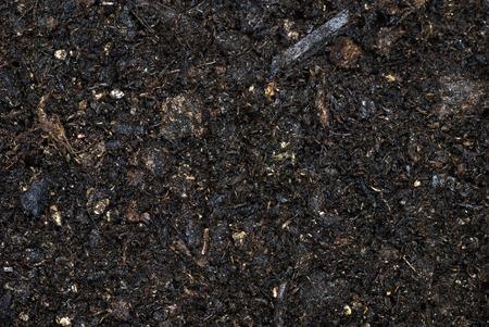 Moist pile of soil