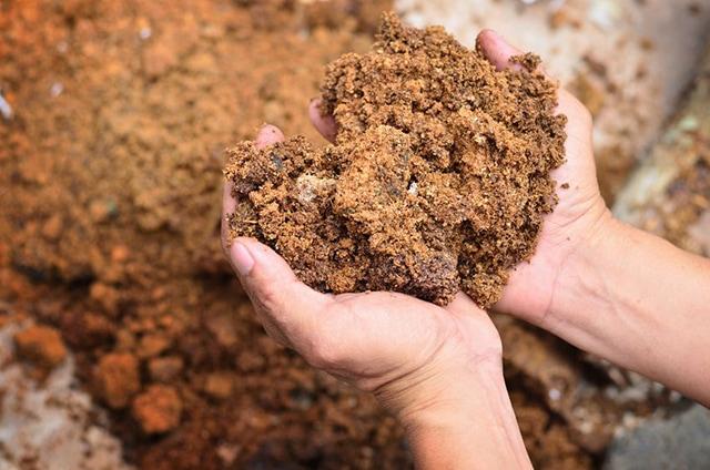 Mushroom Compost Material