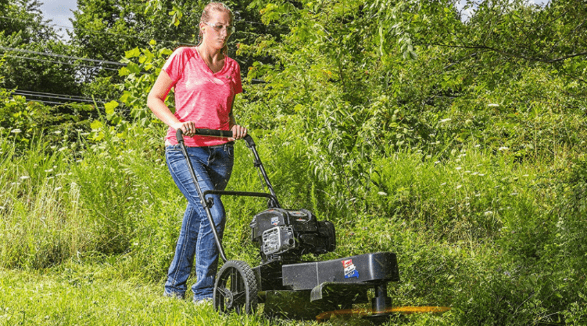 Brush Cutter Vs String Trimmer