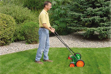 Grass Cutting Length