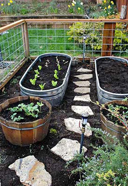 Planet Natural Raised Bed Gardening