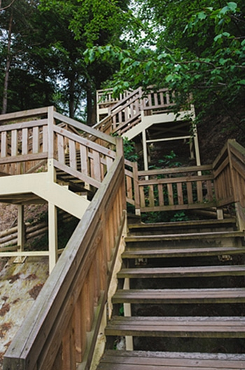 Long Meandering Stairways Lead Up (or Down) The Hillside To Explore The  World Around You. These Beach Steps Take You From The Heights Of The Forest  To The ...