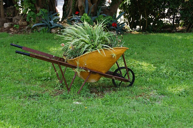 Incroyable Painted Old Wheelbarrow Planter