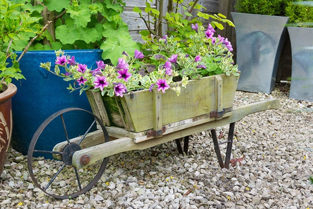 Superbe Utilizing A Cool Planter With A Colorful Flower Gives The Planter A Pop Of  Color As Decoration. In This Case, The Wooden Wheelbarrow Is Filled With ...