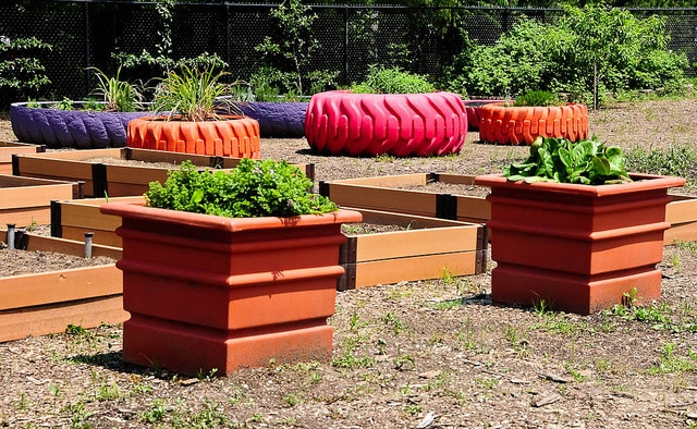 Varying Sizes Tire Planters