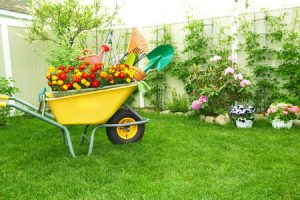 benefits of plastic wheelbarrow