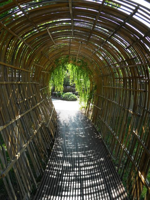 Bamboo Arches