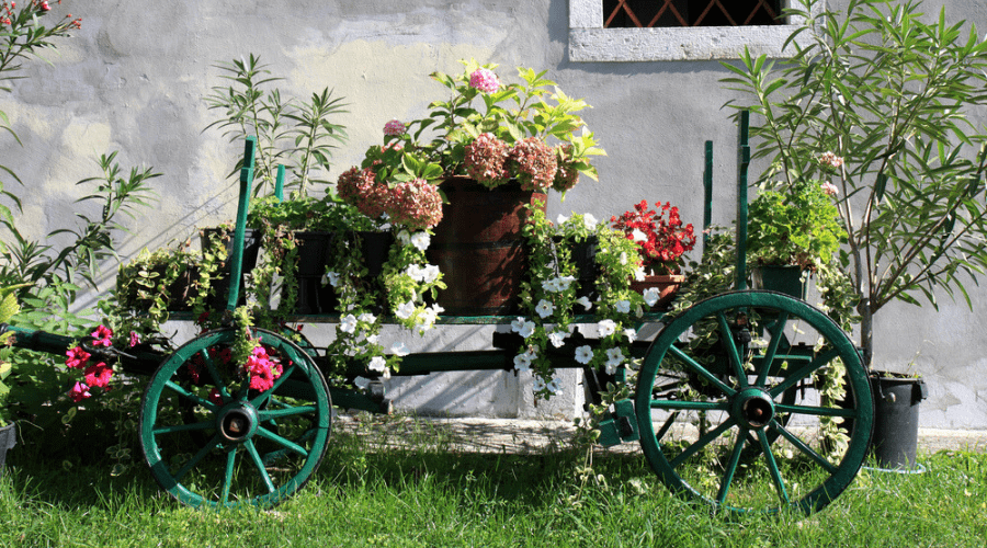 Featured Image - THE BEST VINTAGE WHEELBARROW PLANTER IDEAS