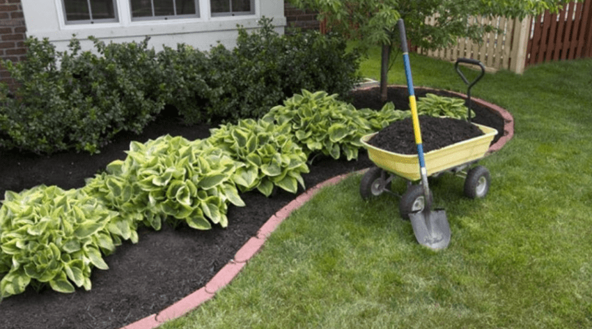 Featured Image - EVERYTHING YOU EVER NEEDED TO KNOW ABOUT MULCH