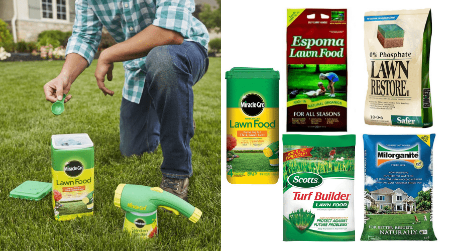 Best Lawn Fertilizer 2020 Reviews