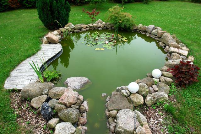 Classical Pond