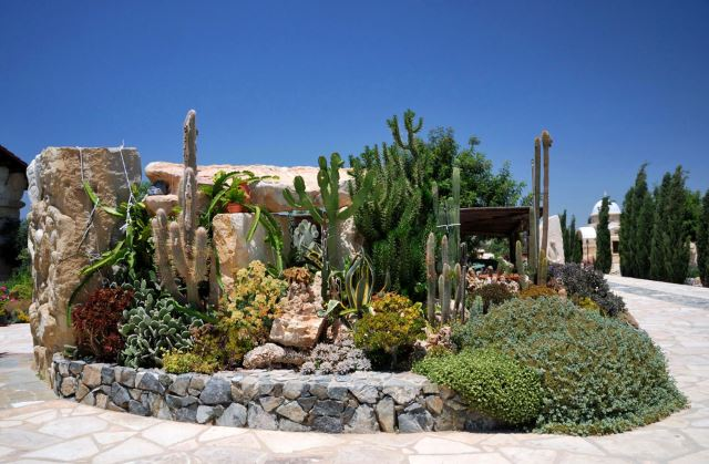 If Landscaping A Large Area Isnu0027t Your Thing, Then Consider One Well Placed  Garden Bed That Can Embrace The Concept Of Desert Living.