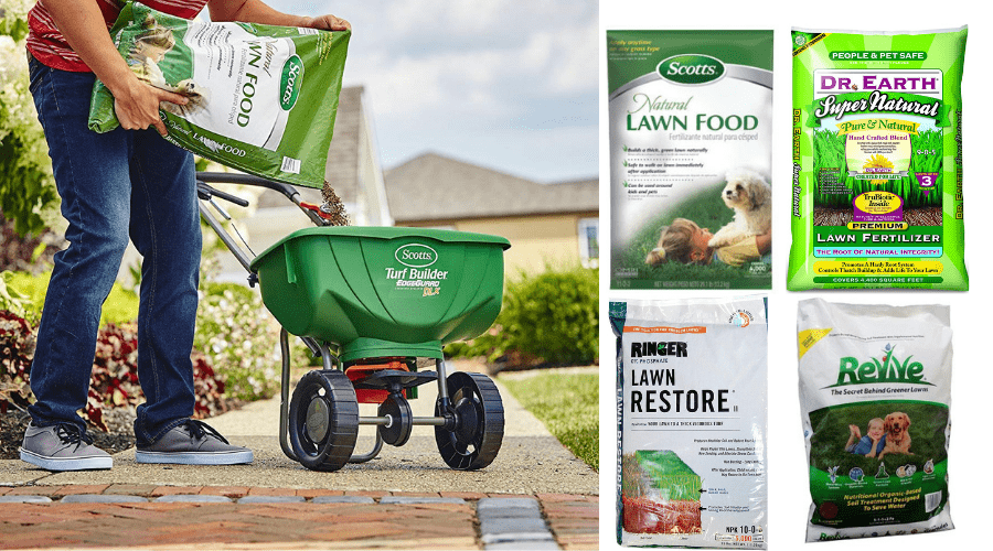 Featured Image - DR. EARTH LAWN FERTILIZER REVIEW