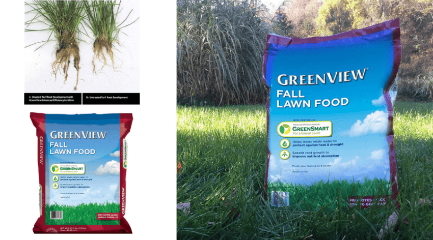 Revive Lawn Fertilizer Review Organic Granules