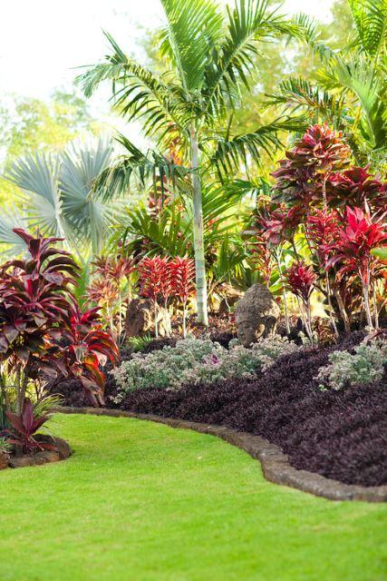 Sensational Succulents