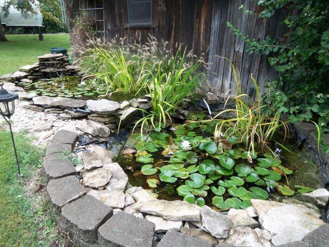Twinned Ponds