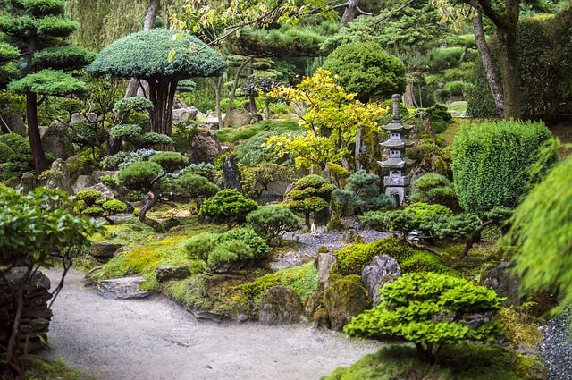 Japanese Gardens Are Also Popular For Their Bonsai, Or Art Of Growing And  Creating Miniature Trees And Other Vegetation. These Look Great Amongst  Statuary ...