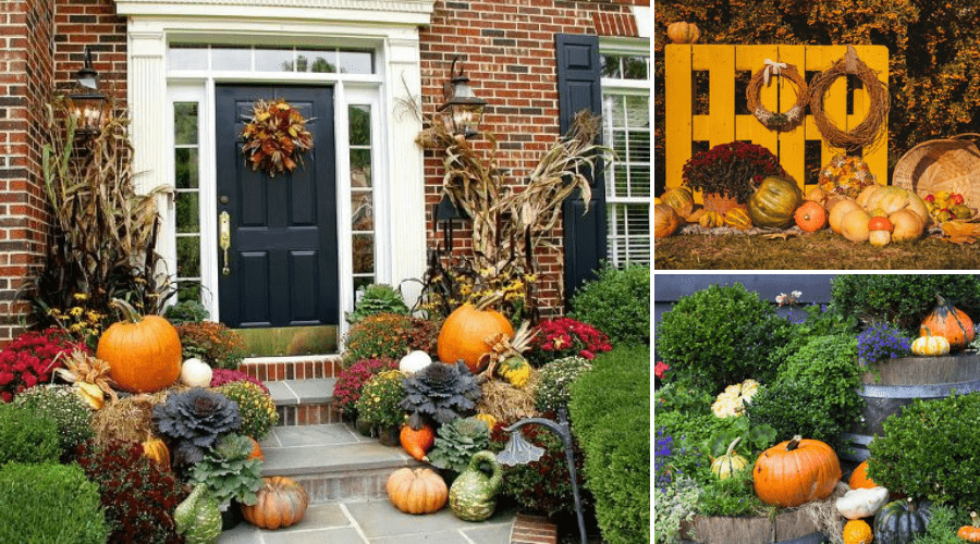 Featured Image - BEST FALL LANDSCAPE IDEAS