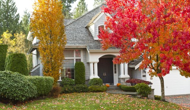 22 Of The Best Fall Landscape Ideas 17 Is Perfect