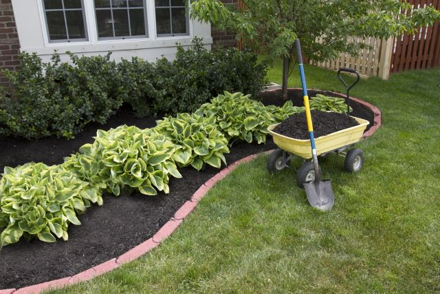 40 awesome and cheap landscaping ideas 27 is too easy for Flower garden ideas on a budget