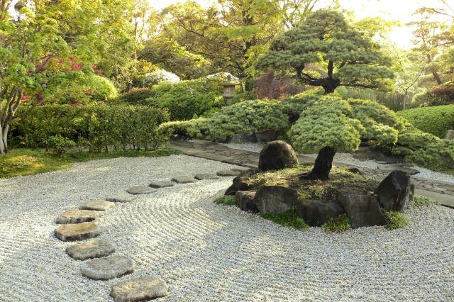 Stone Gardening